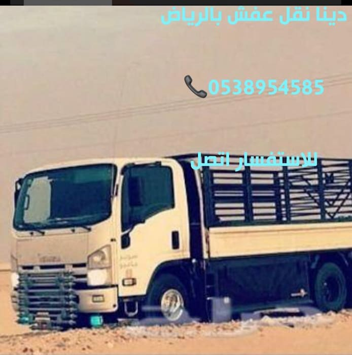 country  by دينا نقل عفش بالرياض0503613111/0545355925, Country Bamboo Green