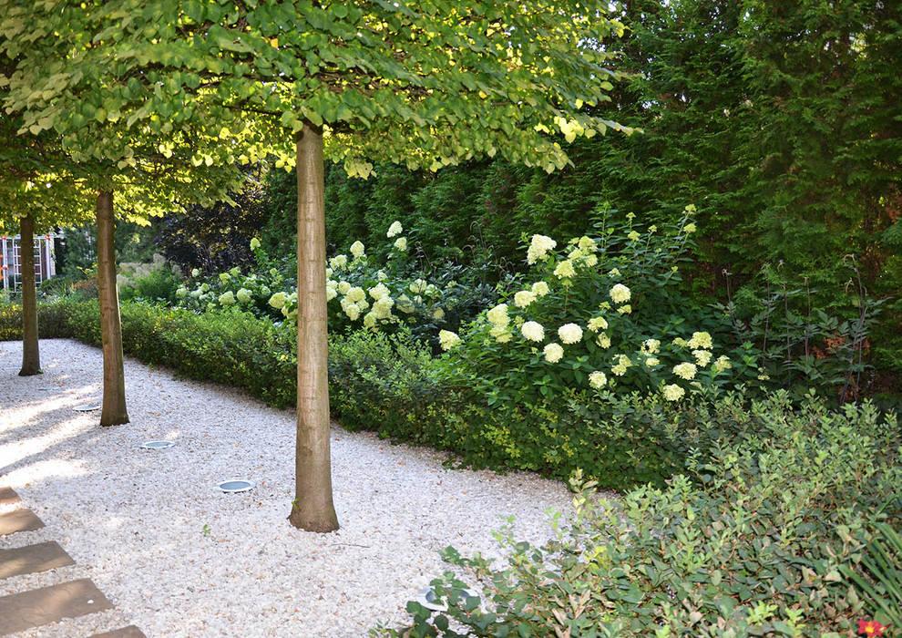 Вилла с садом в стиле модерн. КП Бенелюкс. 2012 г: Передний двор в . Автор – ARCADIA GARDEN Landscape Studio, Модерн