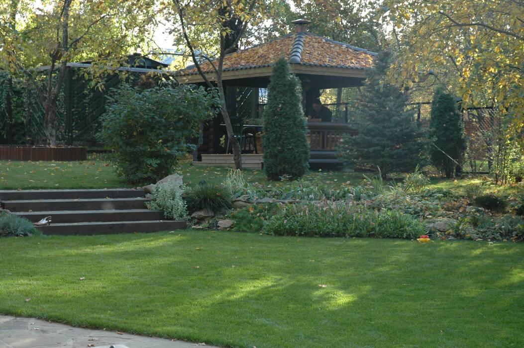 Minimalist style garden by ООО GeoGraffiti Minimalist