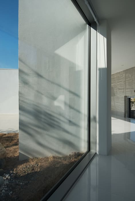 Modern Windows and Doors by ARCHIRIE Modern