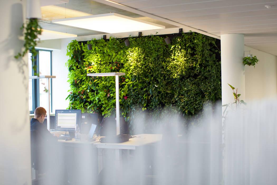 Begrunte Wande Moderne Burogebaude Von Kaldma Interiors