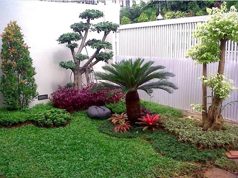 31 ide taman kecil   082159942323:  Ruang Komersial by TAMAN RUMAH KECIL