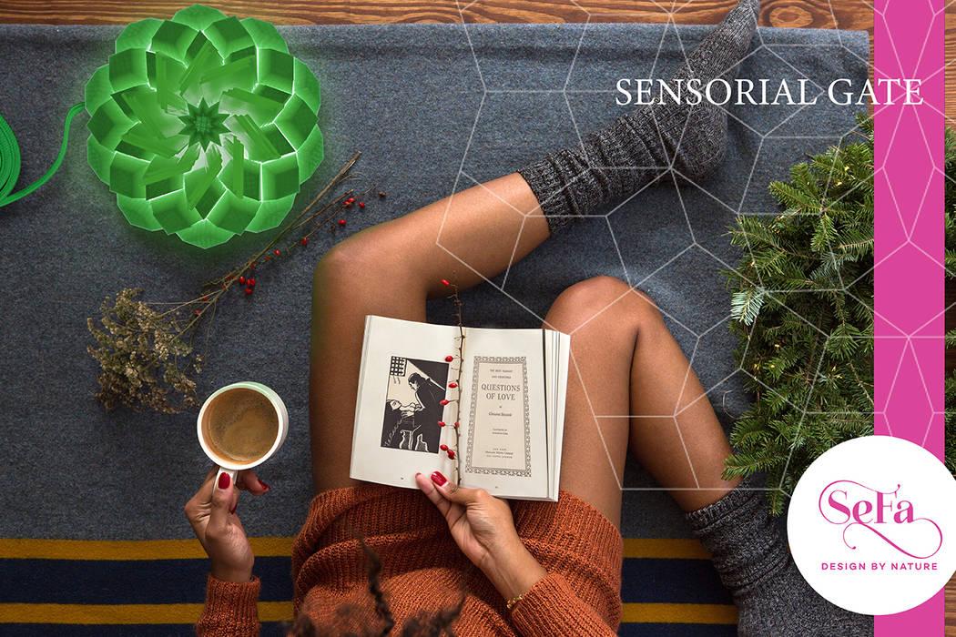 现代客厅設計點子、靈感 & 圖片 根據 SeFa Design by nature 現代風