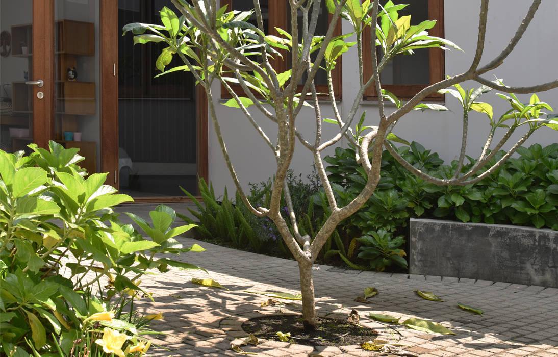 Q-House Bandung Oleh CV Berkat Estetika Tropis Kayu Wood effect