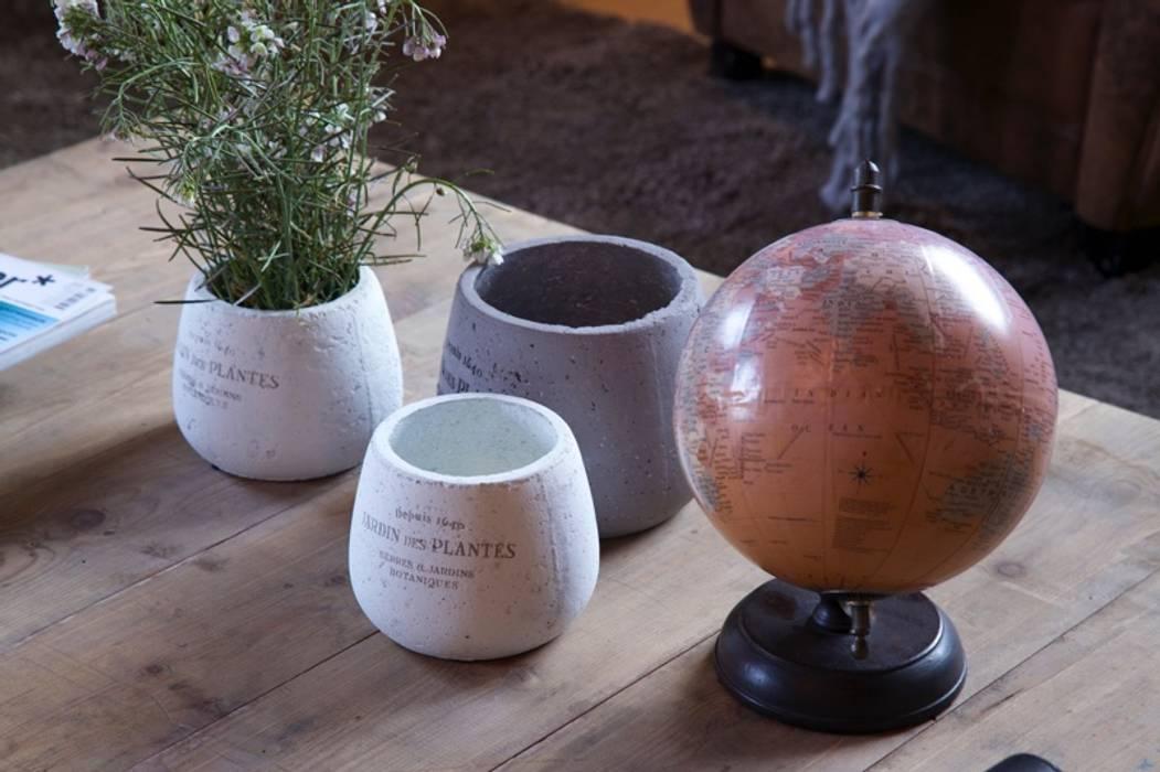 Bodegas Iniesta: Bodegas de estilo  de Piedra Papel Tijera Interiorismo