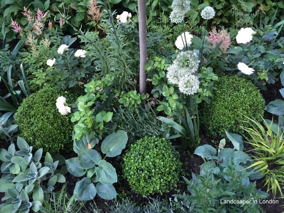 front garden:  Front garden by Landscaper in London