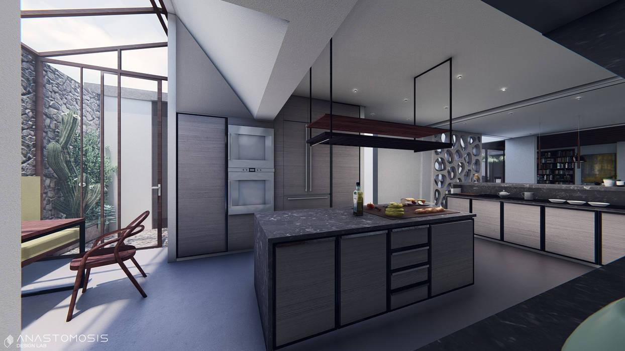 المطبخ Kitchen:  Kitchen تنفيذ Anastomosis Design Lab,