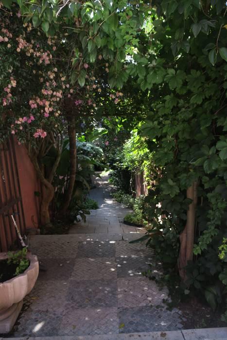 Reflexo de espírito de selva: Jardins zen  por Maria Mayer | Interior & Landscape Design,