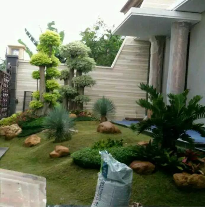 Tukang Taman Ahli Oleh Tukang Taman Surabaya - Tianggadha-art Tropis Batu