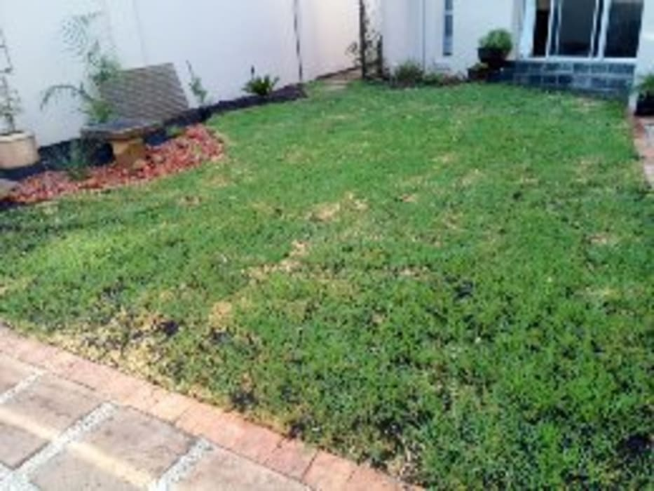 Front house garden:  Front yard by Delight Gardening and Irrigation Service's,