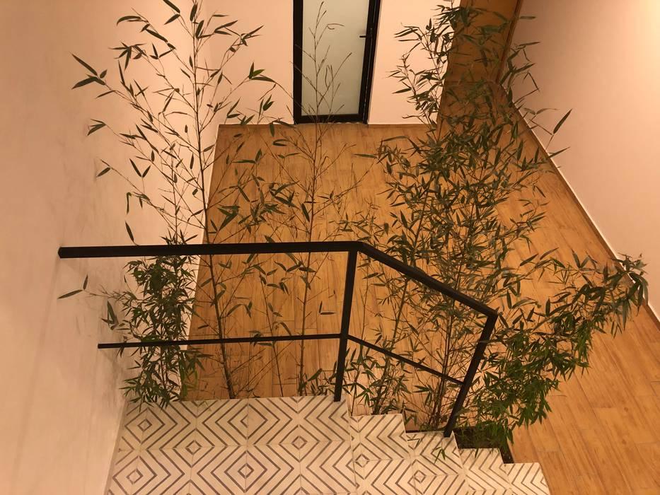 by Arquimia Arquitectos Modern