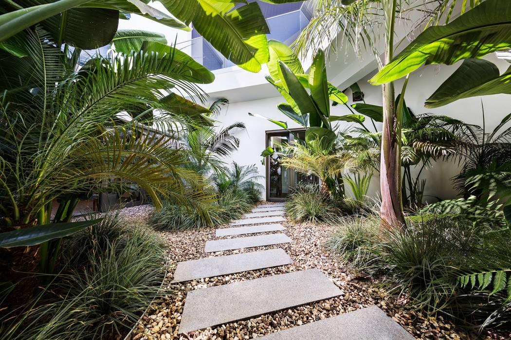 Jardíssimo - Casa Raio de Luz, Porches Jardins tropicais por Jardíssimo Tropical
