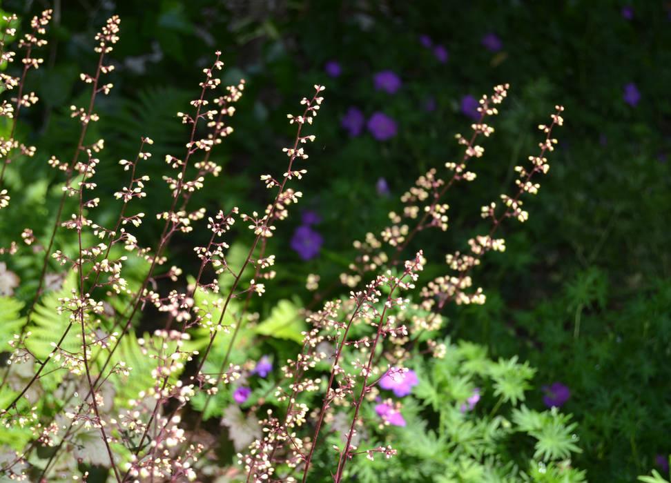 Detalle floraciones Jardines de estilo moderno de Irati Proyectos Moderno
