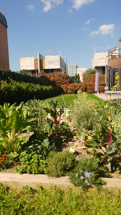 El jardín tres años después de su creación de Arcadia Jardines y paisajes Moderno