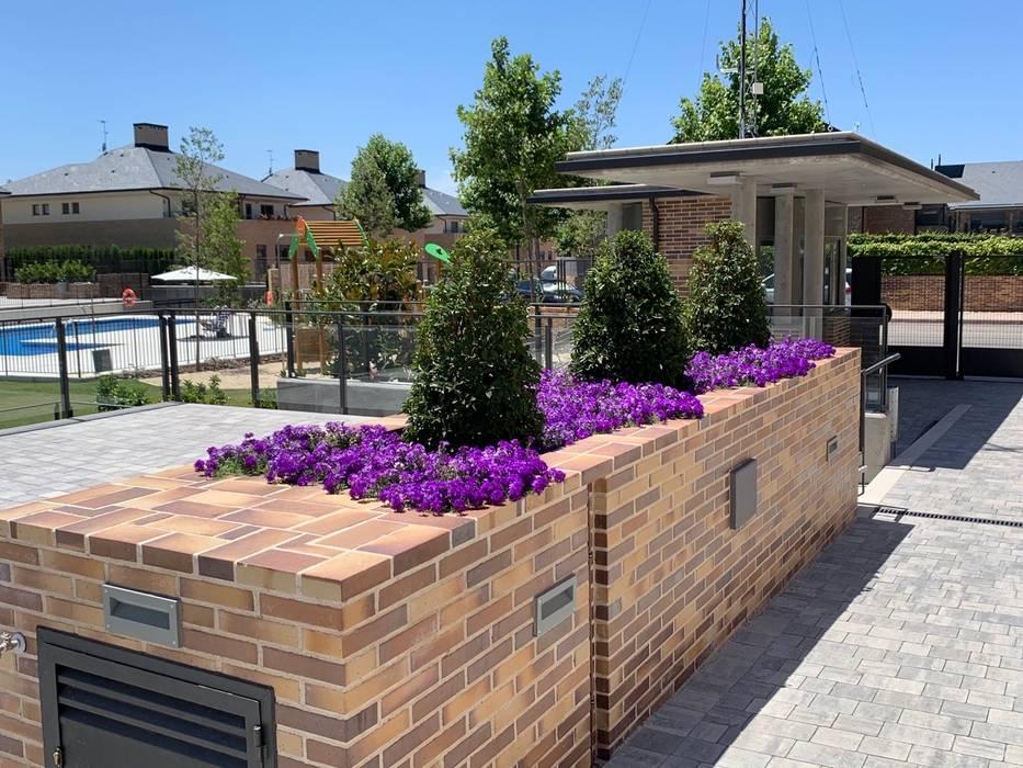 Jardinera en la entrada con flor de temporada Jardines de estilo clásico de Arcadia Jardines y paisajes Clásico