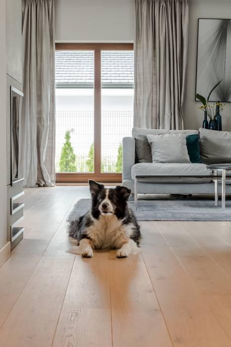 Livings de estilo escandinavo de Bargański Pracownia Wnętrz Escandinavo