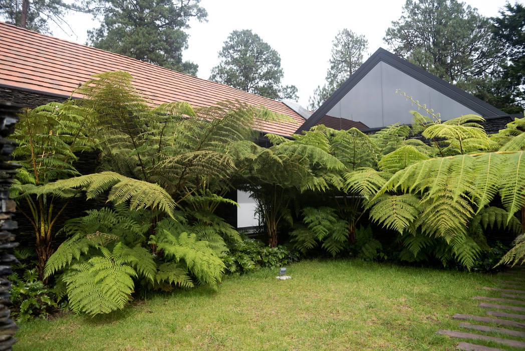 Diseño Jardín Cliente El Retiro - Antioquia Jardines de estilo tropical de TERRA Prados y jardines Tropical