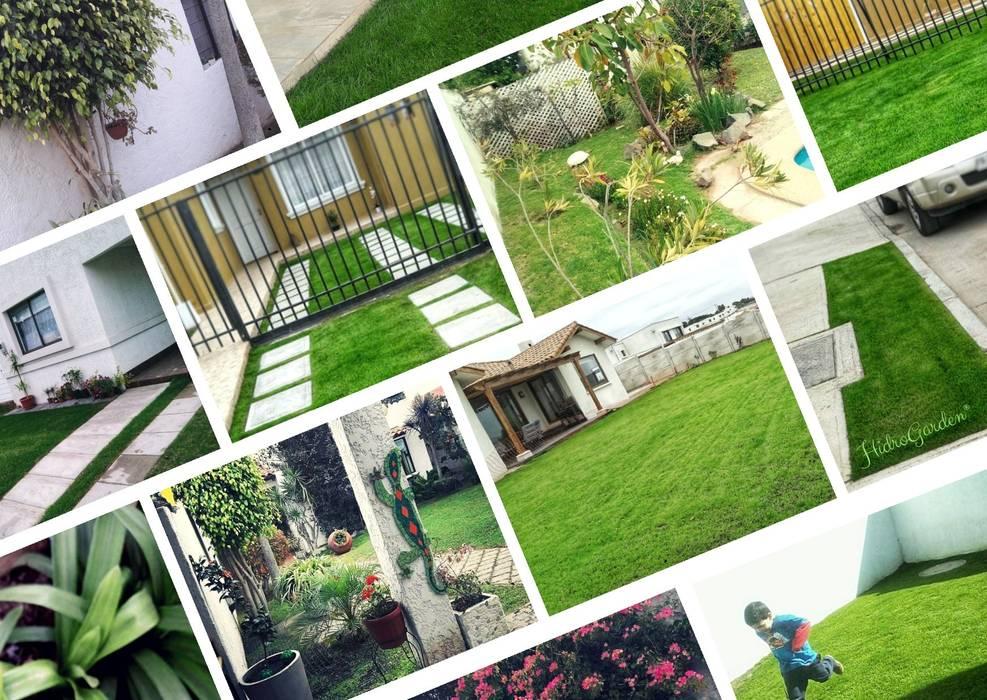 HG Jardinería Moderner Garten