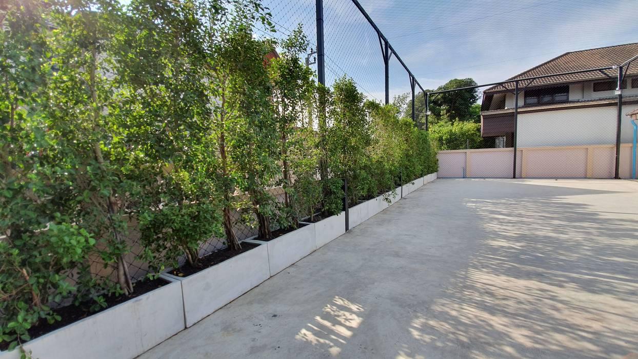 แนวscreen Trimitcivil&engineering สวนหน้าบ้าน คอนกรีต