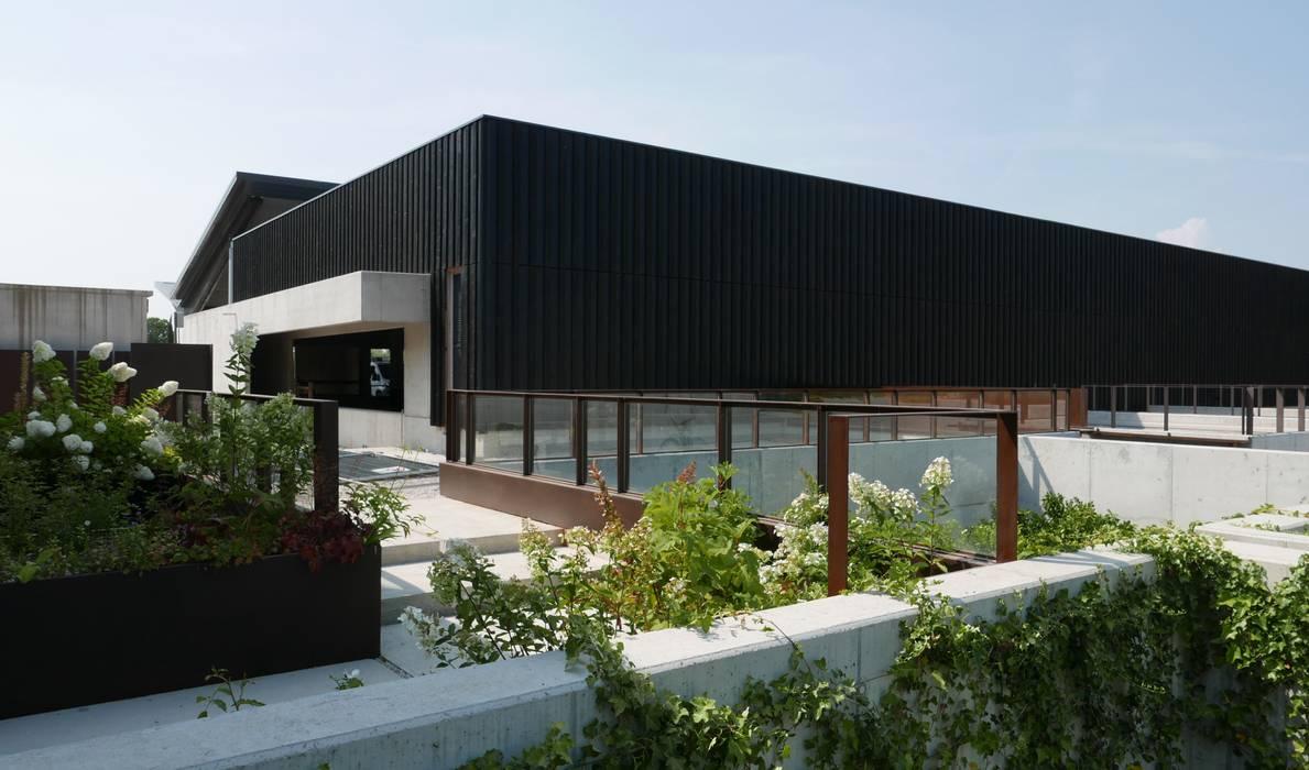Imola Legno S.p.A. socio unico Commercial Spaces Wood