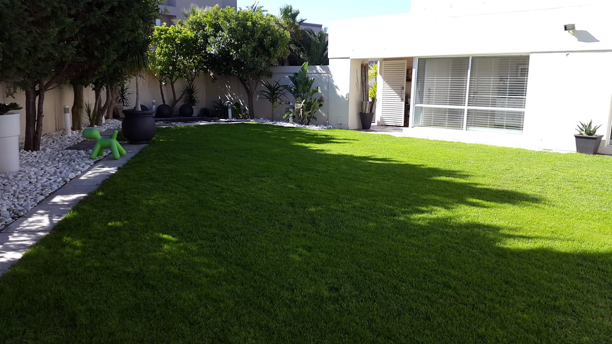 Overseeding of Lawn by Easi Grow