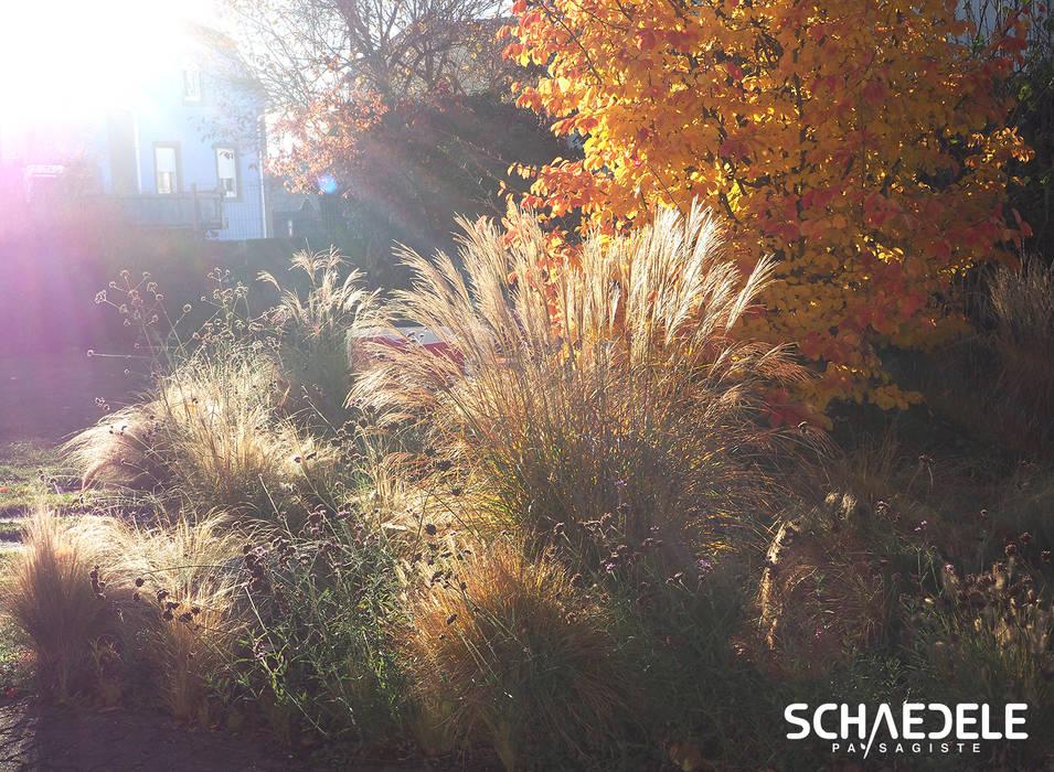 Le jardin en Automne par SCHAEDELE PAYSAGISTE Scandinave