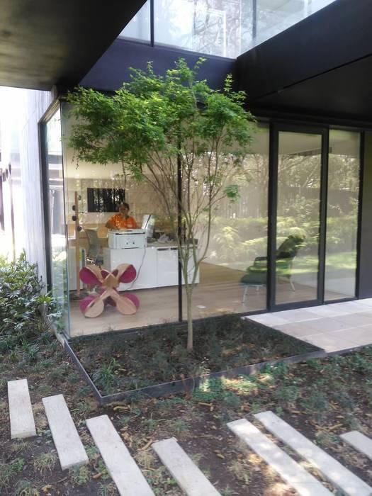 Arquitectura Progresiva オフィス&店