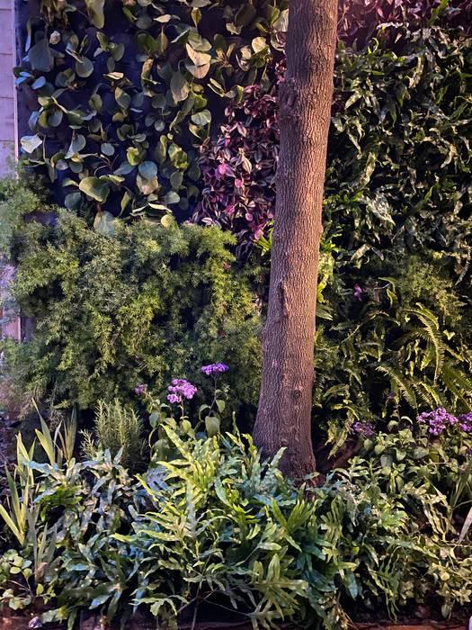 Laromita|Ordi plant Halaman depan Aluminium/Seng Green