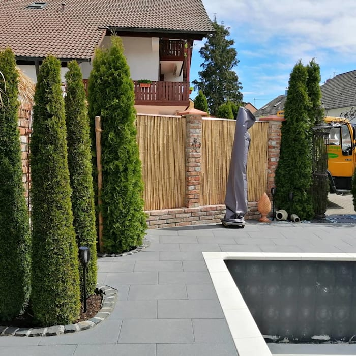 Zypressen neben dem Pool Natura Garten und Landschaftsbau UG Vorgarten Massivholz Grün