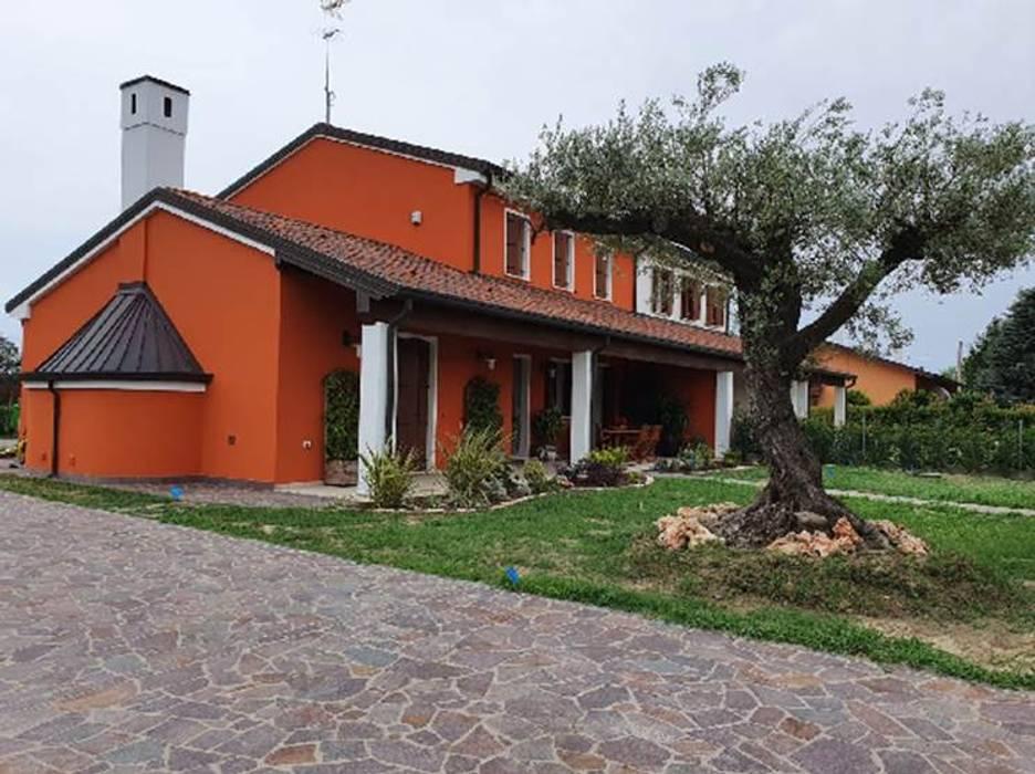 casa rurale con ulivo Tecnoverde srl Giardino anteriore