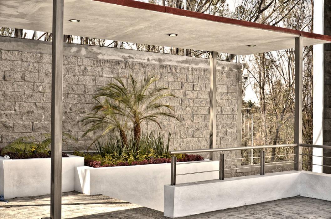 CASA LAGO Arqcubo Arquitectos Jardines modernos Mármol Acabado en madera