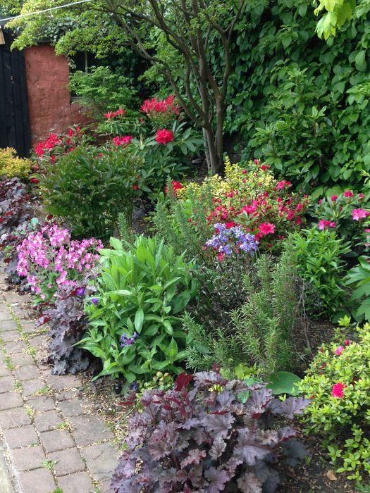 A shady border Anne Macfie Garden Design Rustic style garden
