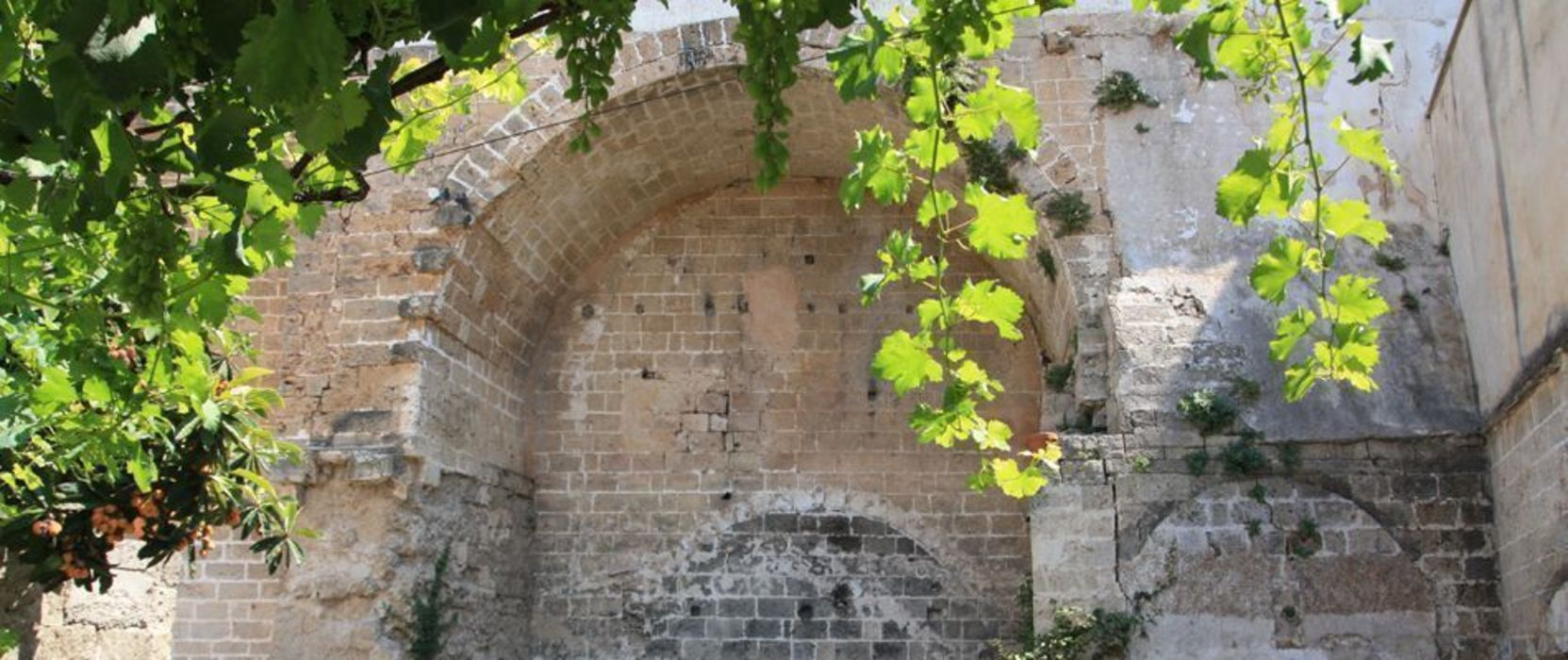 Il giardino segreto otragiardini Giardino in stile mediterraneo