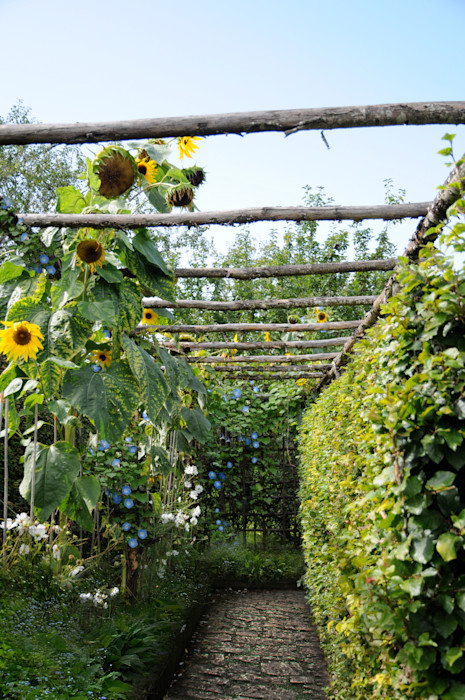 Bersò di girasoli Anna Paghera s.r.l. - Green Design Giardino in stile mediterraneo