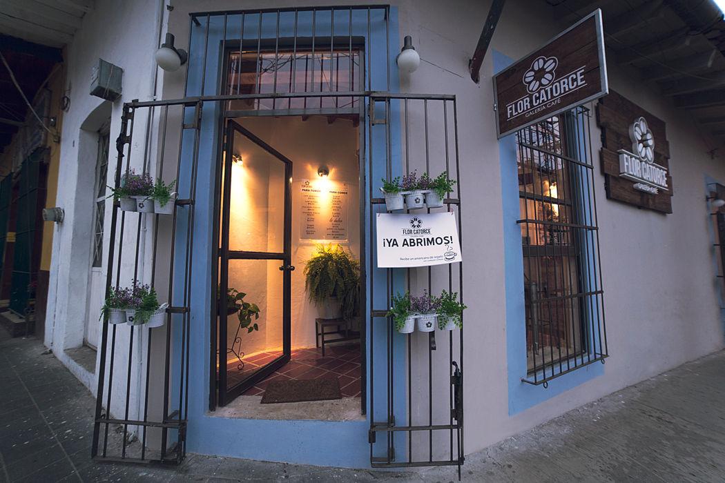 Flor Catorce Taller La Semilla Gastronomía de estilo moderno Multicolor