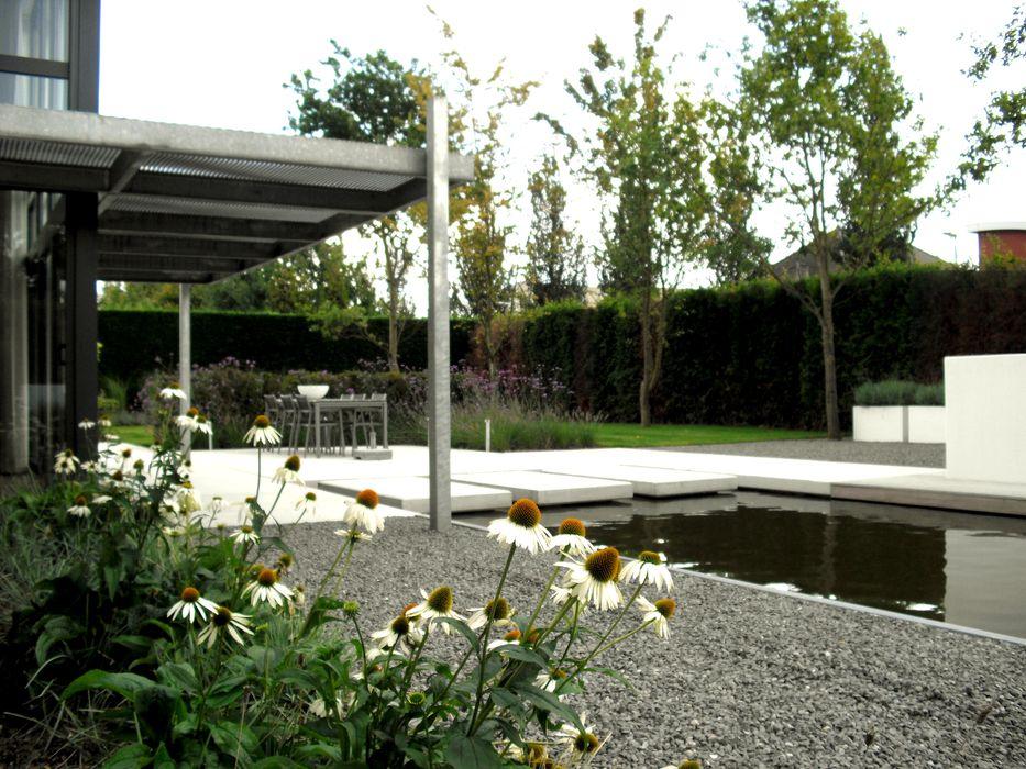 Sobere beplanting Sparq Tuinen Moderne tuinen