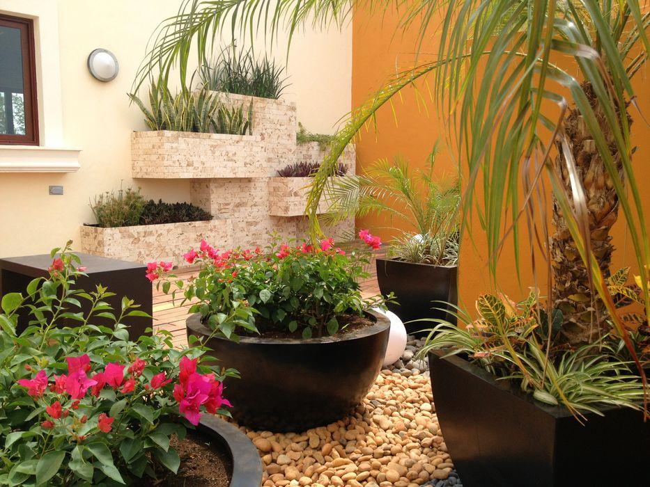 Jardines con maceteros y más... EcoEntorno Paisajismo Urbano Jardines modernos