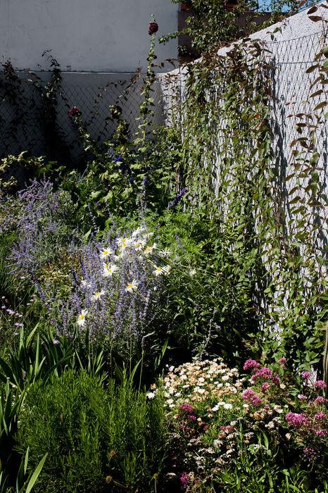 Casa na Ajuda EXTRASTUDIO Jardins mediterrânicos
