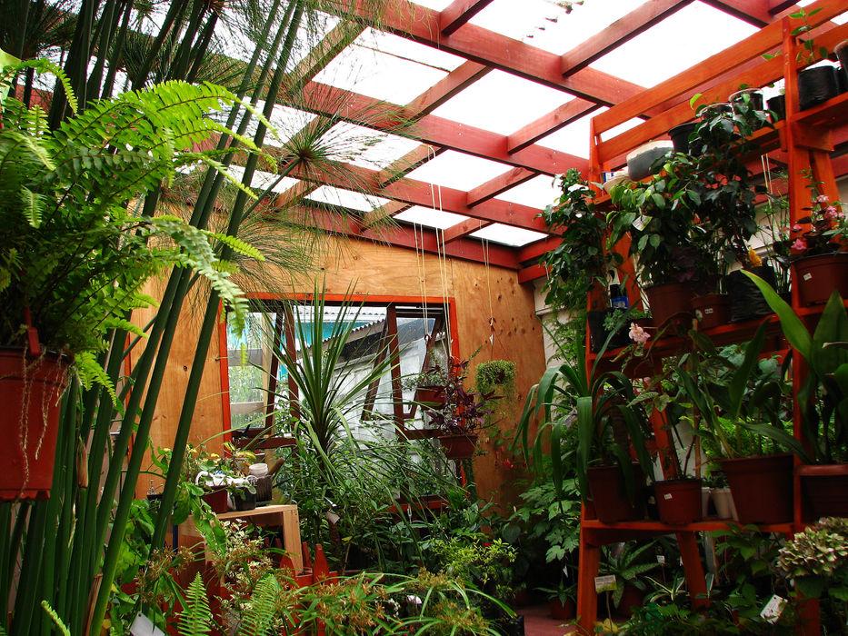 Diseño y Habilitación Local Comercial Jardin Vortice Vortice Design Ltda Jardines de estilo rústico