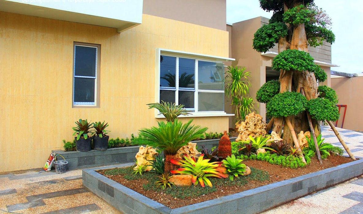 Desain Taman Mewah Dengan Bonsai Dollar Tukang Taman Surabaya - flamboyanasri Halaman depan