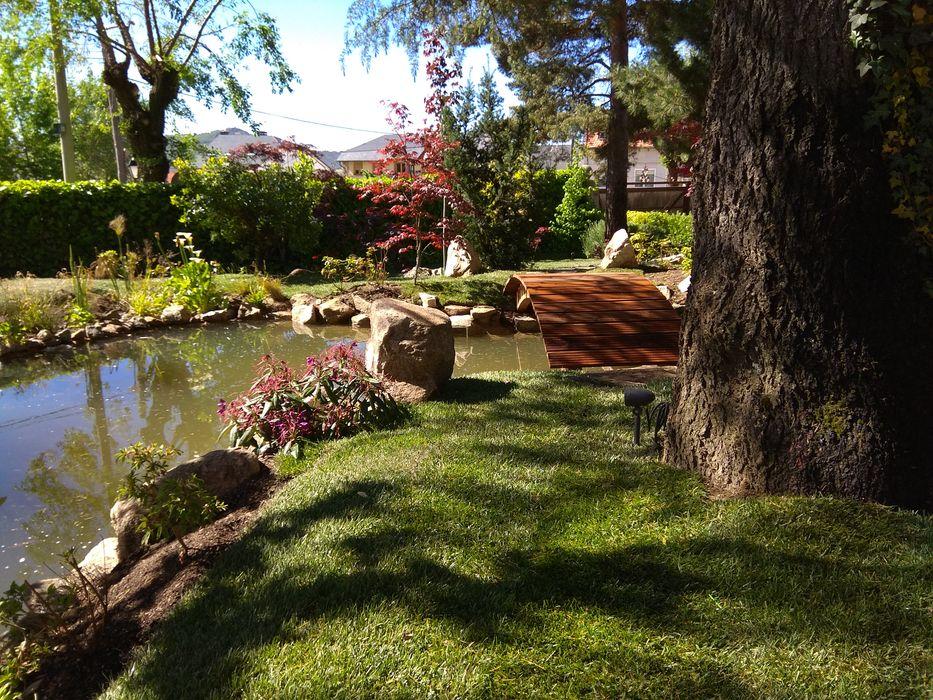 Jardines Japoneses -- Estudio de Paisajismo Дзен-сад