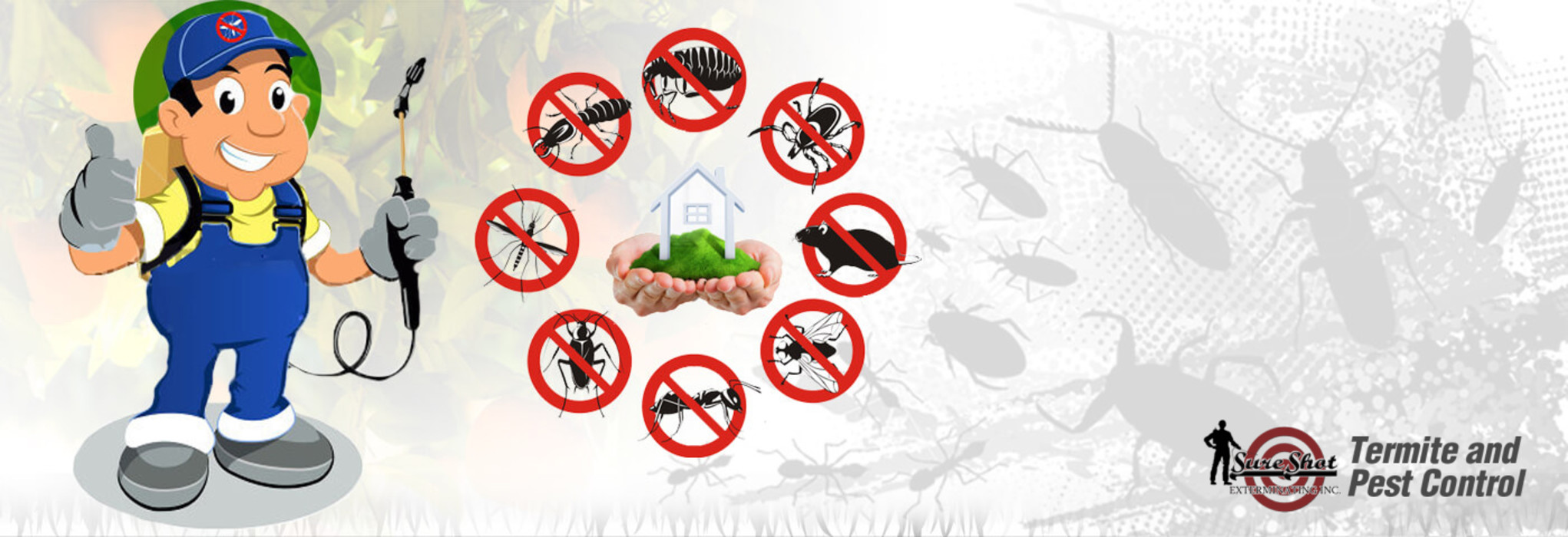 Things You Need To Know About Pest Control Services and Technology Home Renovation Lantai