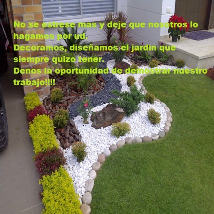 VERDE VISUAL Garden Plants & flowers