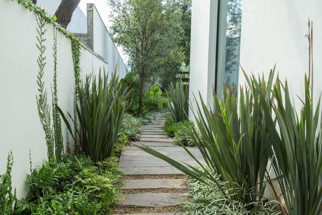 LANDSCAPING Canelo exteriores Jardines en la fachada Verde