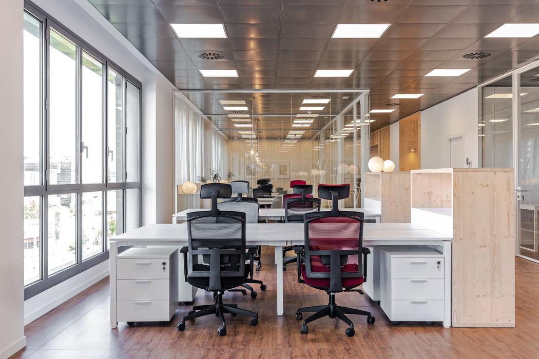 Oficinas Allergy Therapeutics Barcelona ESTUDIO DE CREACIÓN JOSEP CANO, S.L. Estudios y despachos de estilo moderno