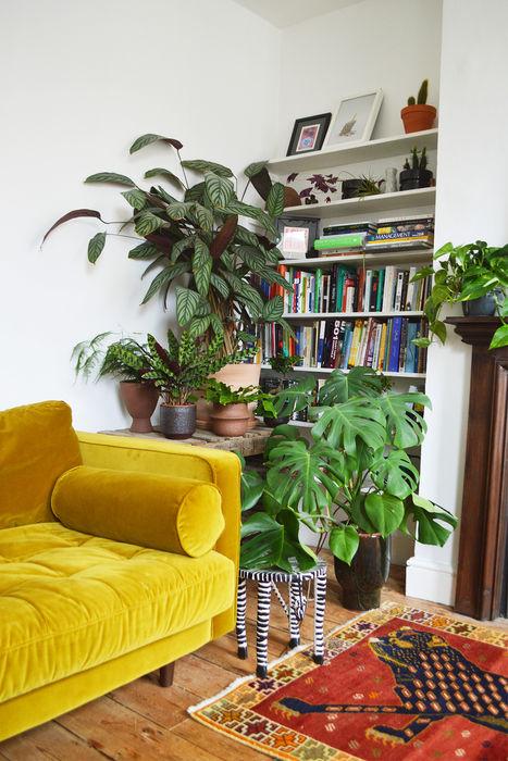 Living Room with plants Cuemars Ruang Keluarga Modern