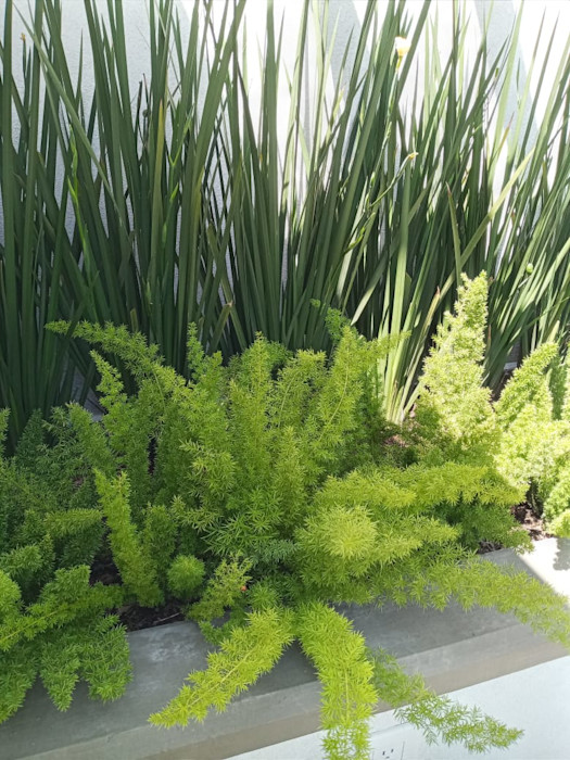 Exteriores Jardineria bonaterra JardínPlantas y flores