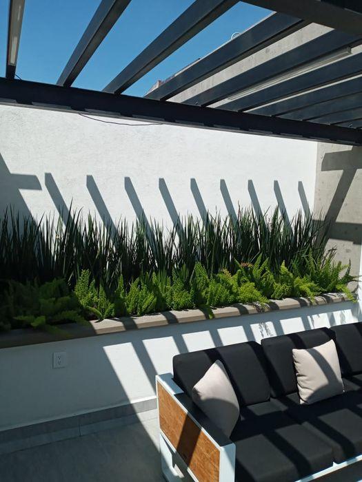 Jardineria bonaterra Сад Растения