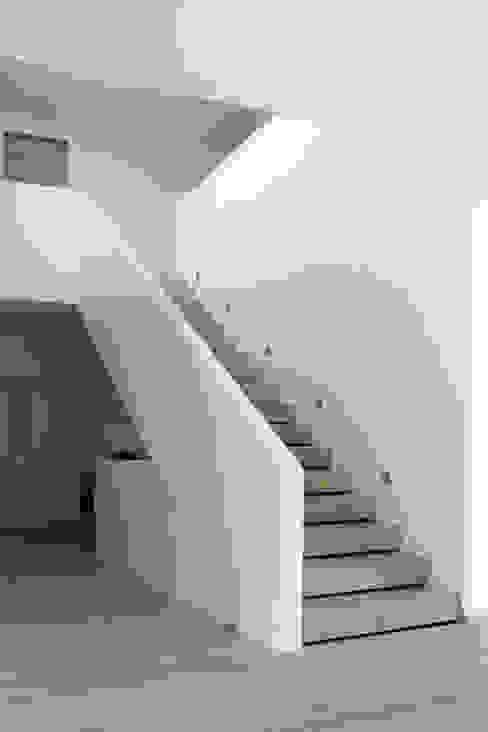 Haus M Sieckmann Walther Architekten Moderner Flur, Diele & Treppenhaus