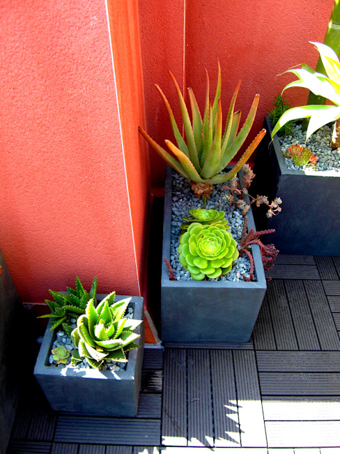 Simbiosi Estudi Moderner Garten